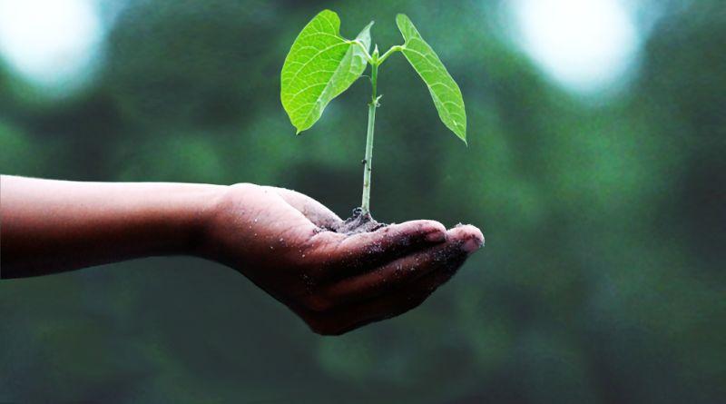 Il tuo contributo per l'Agenda 2030 attraverso gli standard ISO!