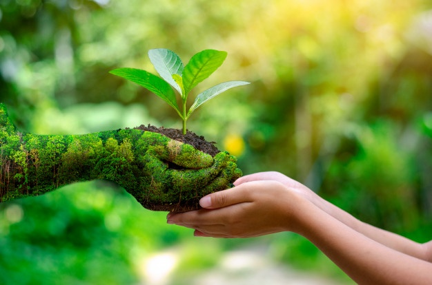 Perchè implementare un sistema di gestione ambientale - ISO 14001